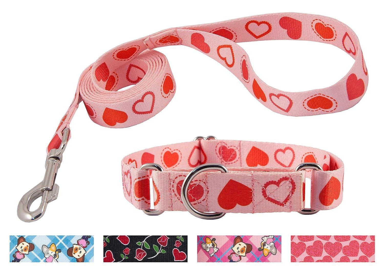 Happy Hearts Medium, 1 Inch Wide Happy Hearts Medium, 1 Inch Wide Country Brook DesignHappy Hearts Martingale Dog Collar & Leash Medium