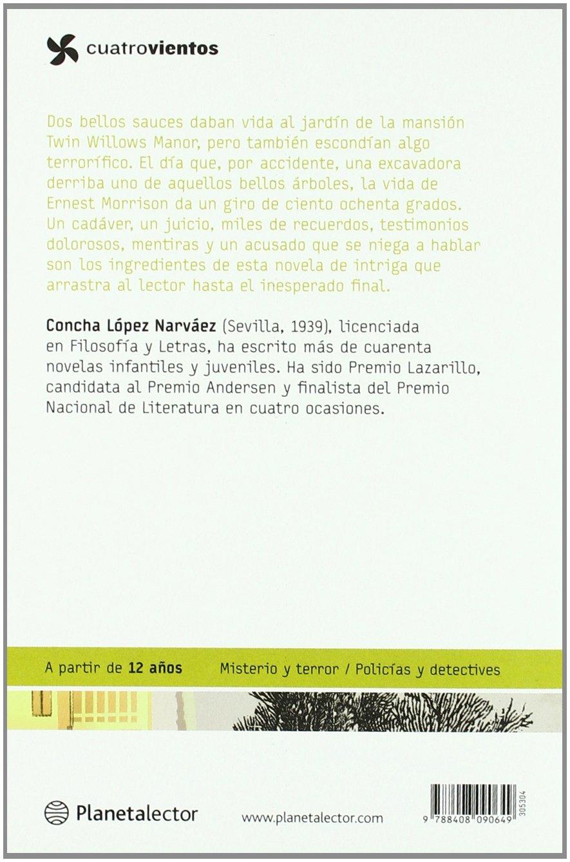 El silencio del asesino / The Assassins Silence (Spanish Edition): Concha Lopez Narvaez, Rafael Salmeron: 9788408090649: Amazon.com: Books