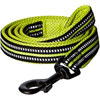 PetsUp Dog Leash for Small Medium Large Dogs (2cm Wide 200cm Long, Reflective Leash- Green)