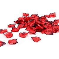 ALIENGT 2000 Rosenblätter Rot Künstlich Blütenblätter Hochzeit Rosenblüten Künstlich Rosen Blätter Blüten Seidenblumen Valentinstag Romantische Hochzeit Deko Geburt Taufe Geburtstag Party Dekoration