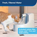 PetSafe Drinkwell Mini Pet Fountain for Cats and
