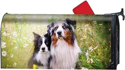 Australian Shepherd Mailbox Cover