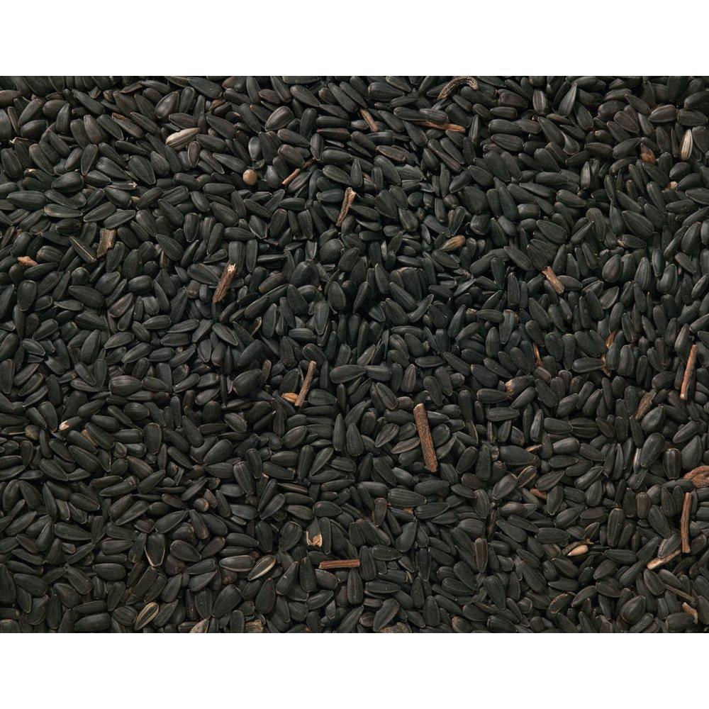 Black Oil Sunflower Bird Seeds 13kg Johnston & Jeff