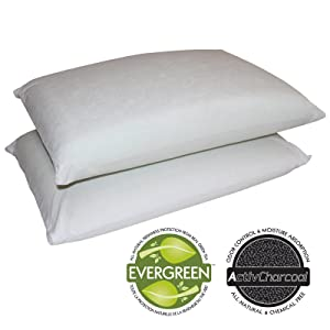 Sleep Master Memory Foam Traditional Pillows