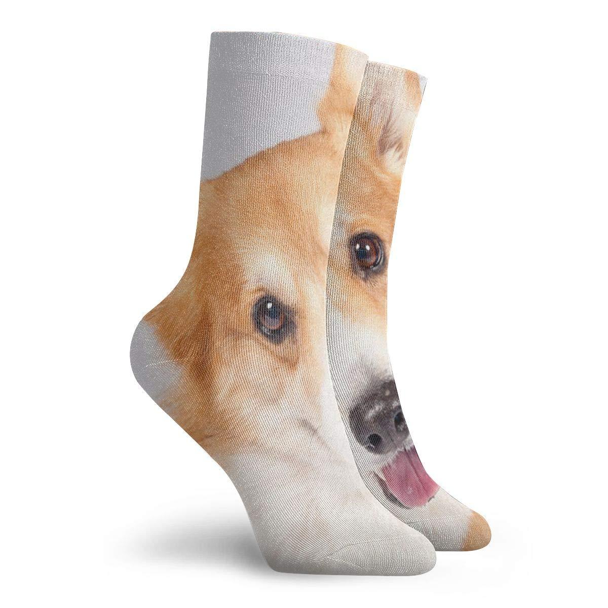 WEEDKEYCAT Cute Smile Welsh Corgi Dog Adult Short Socks Cotton Cute Socks for Mens Womens Yoga Hiking Cycling Running Soccer Sports