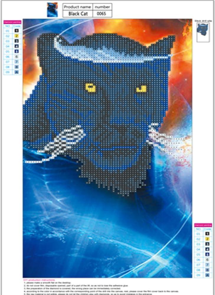 40cm Universum Schwarzer Panther Diamant Verzierung Kreuzstich Dekoration von DIY Haus 25 sunnymi 5D Bild