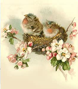 """4 pcs  Colorful Hummingbird 2-1//4/"""" and 2-5//8/"""" Waterslide Ceramic Decals Ox"""