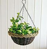 Suspensions pour plantes avec chaînette en métal, osier naturel, avec film, chaînette en métal pour suspension
