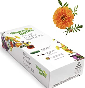Window Garden - Marigold Flower Starter Kit - Grow Your Own Beauty. Germinate Seed on Your Windowsill Then Move to Patio Planter or Landscape. Mini Greenhouse System Make's it Foolproof, Easy and Fun.