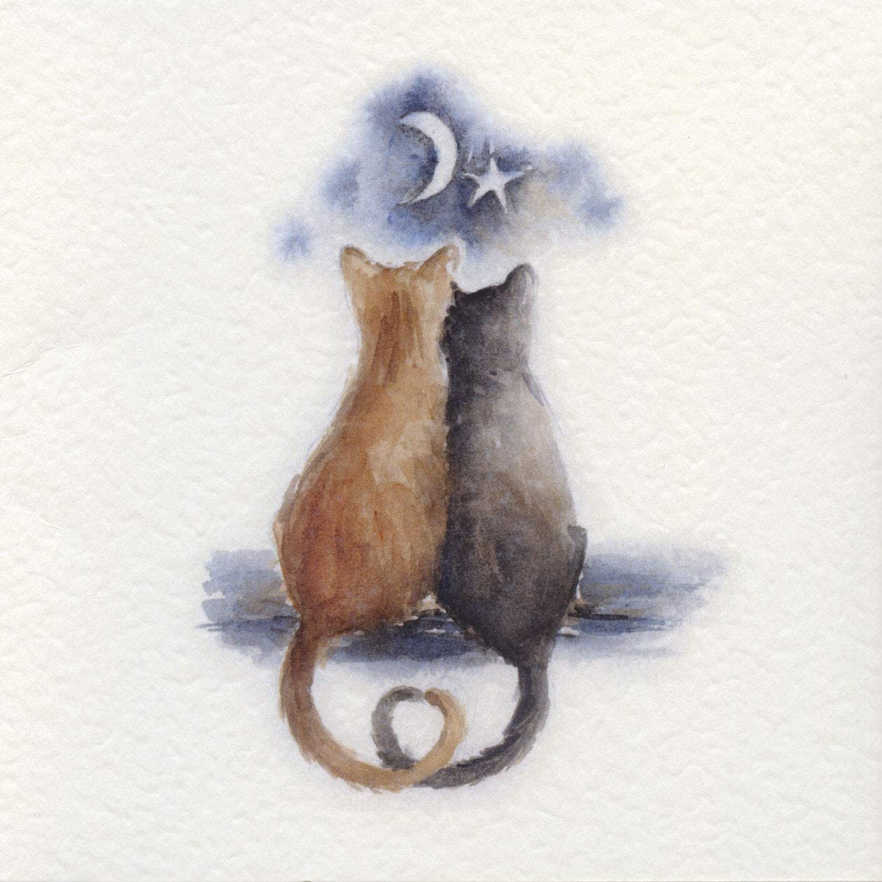Kay Webb Range Star Gazing Cats Greeting Card