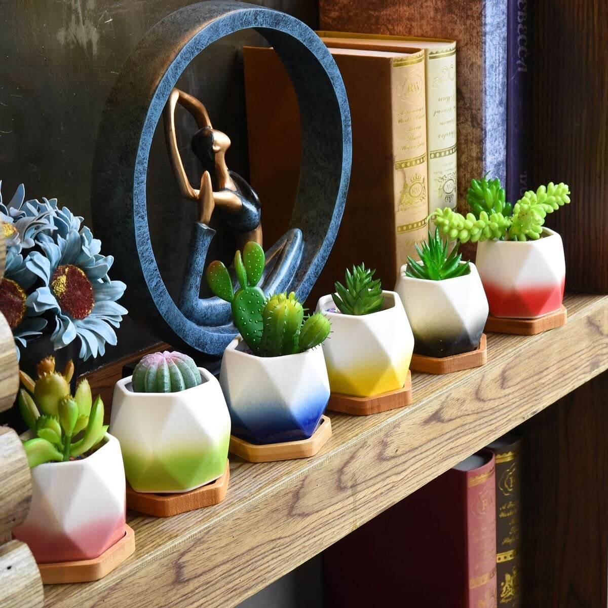 HOMENOTE 2.75 inch Succulent Planter Set with Drainage Hole Small Plant Pots for Succulents Plants(Pack of 3