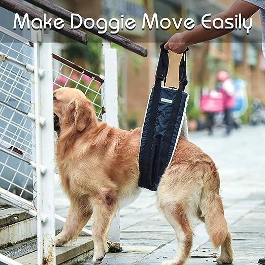 bless/és handicap/és et apr/ès une chirurgie acL pour aide canine support de hanche pour chiens de moyenne et grande taille Seniors Petslucent Sling de transport pour chien pour pattes arri/ères