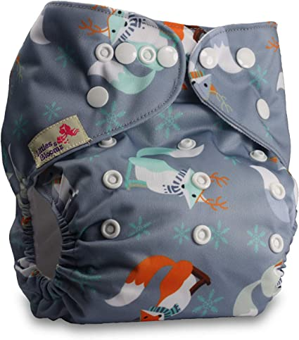 Littles /& Bloomz with 1 Microfibre Insert Pattern 101 Fastener: Popper Set of 1 Reusable Pocket Cloth Nappy