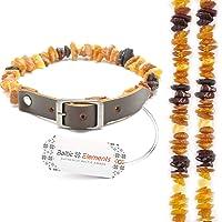 Baltic Elements Bernsteinkette für Hunde und Katzen mit Lederband, Natürliches Zeckenschutz, gegen Zecken und Flöhe, Bernsteinkette Hund