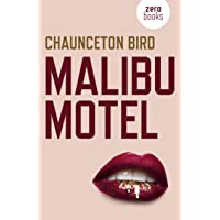 Malibu Motel: A novel about the colossal cost of free cash