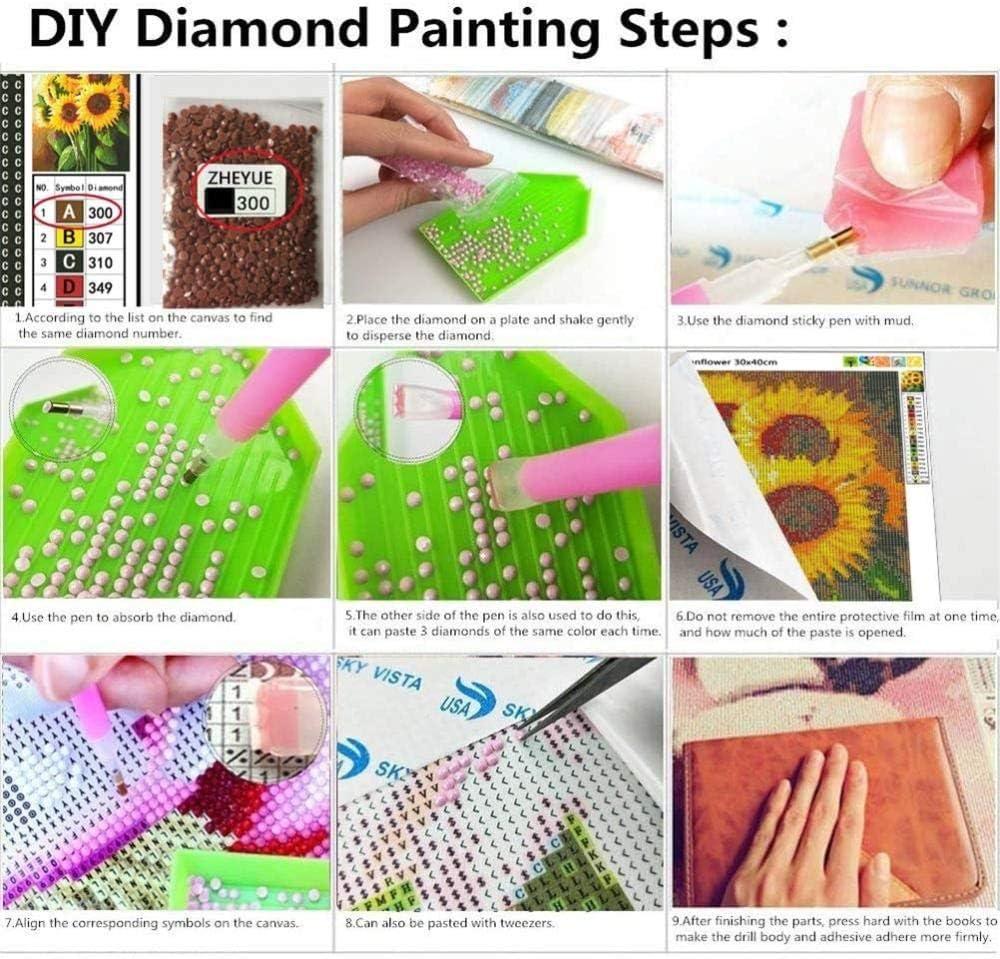 Diy 5D Full Diamond Diamond Kit De Pintura Diamond Art Kits Para Adultos Yjlmt Kit De Pintura Diamantes Por N/úmero 30X40Cm Dinosaurio Rinoceronte