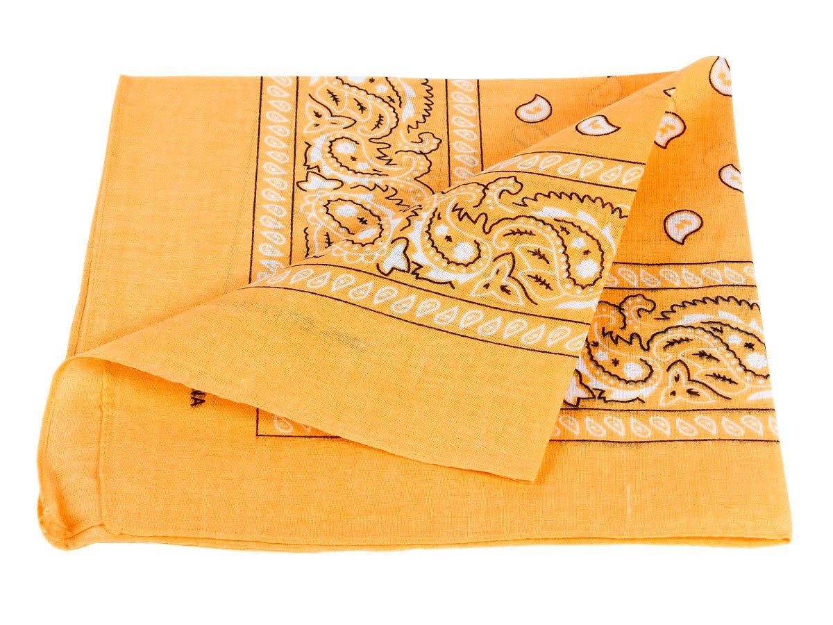 9e2735b3336a Bandana 100% coton, environ 54 x 54 cm Paisley foulard accessoire ...