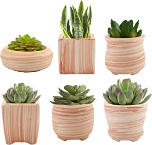 Suwimut 6 Pack Ceramic Succulent Plant Pot, 3 Inch Wooden Pattern Garden Flower Planter Container with Drainage Hole for Succulent, Cactus and Herbs