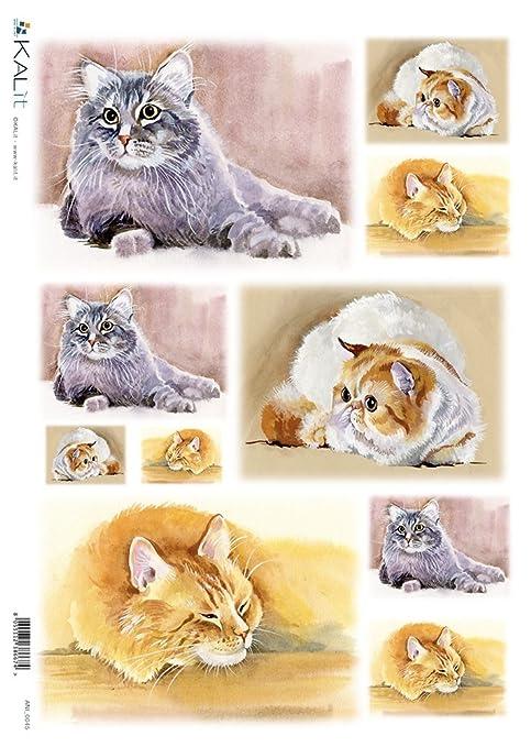 CreativePaper Papel de arroz decoupage: Gatos - cm.32x45: Amazon ...