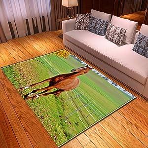KFEKDT Art Living Room Carpet Home Decoration Bedroom Carpet Room Horse Print Floor Mat Dining Room Living Room Carpet No-5 120x200cm