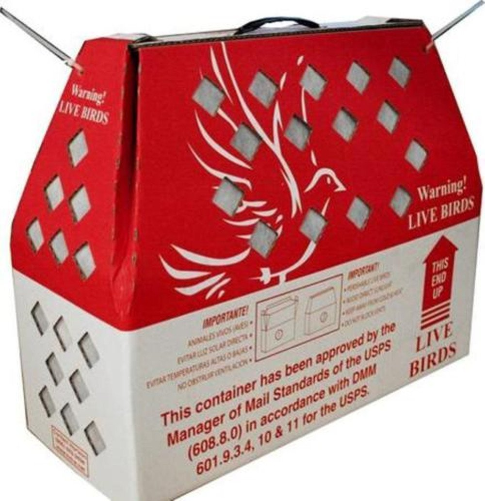 Live Bird Shipping Boxes (10pk) Horizon Chickens Poultry Gamefowl - USPS Approved