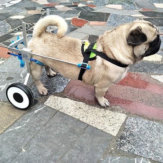 ... Silla de Ruedas Ajustable para Mascotas de 2 Ruedas para Perros pequeños 8-13 Libras Mascota, Silla de Ruedas para rehabilitación de Patas traseras: ...