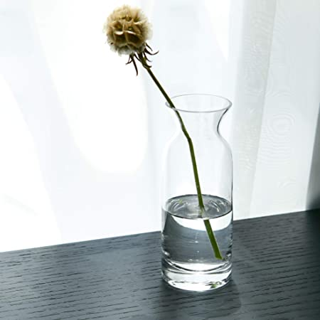 S1egan Glass Vase Handblown Bud Vase In Unique Shape For Dinning Or Living Room Table Bottle Decor 6 Inch Clear Amazon Sg Home