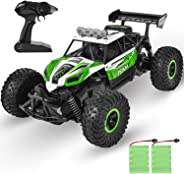 GotechoD Kids Remote Control Car High Speed RC Cars Off Road 1:16 RC Truck Monster Vehicle with 2 Rechargeable Batteries, 202