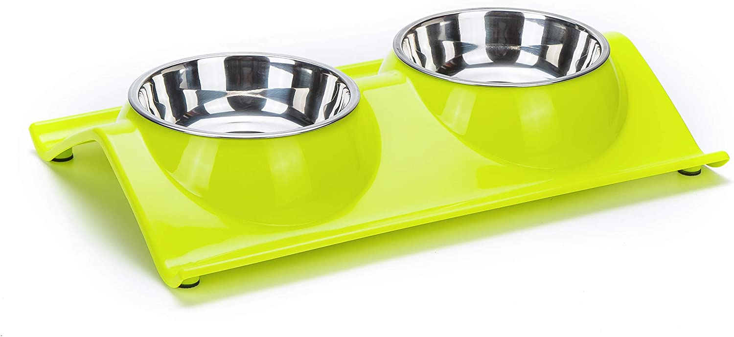 Vealind Non-Spill & Non-Skid Pet Dog Cat Elevated Stainless Steel Double Bowls Feeding Food and Water Bowl (Green)