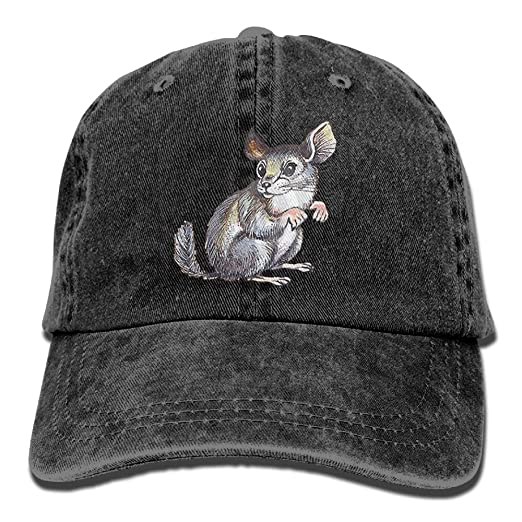 Amazon.com  Adjustable Baseball Caps Chinchilla Cowboy Style Trucker Cap   Clothing ca3fde01c35
