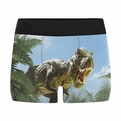 InterestPrint Boxer Briefs Men's Underwear Dinosaur in The Jungle (XS-3XL)