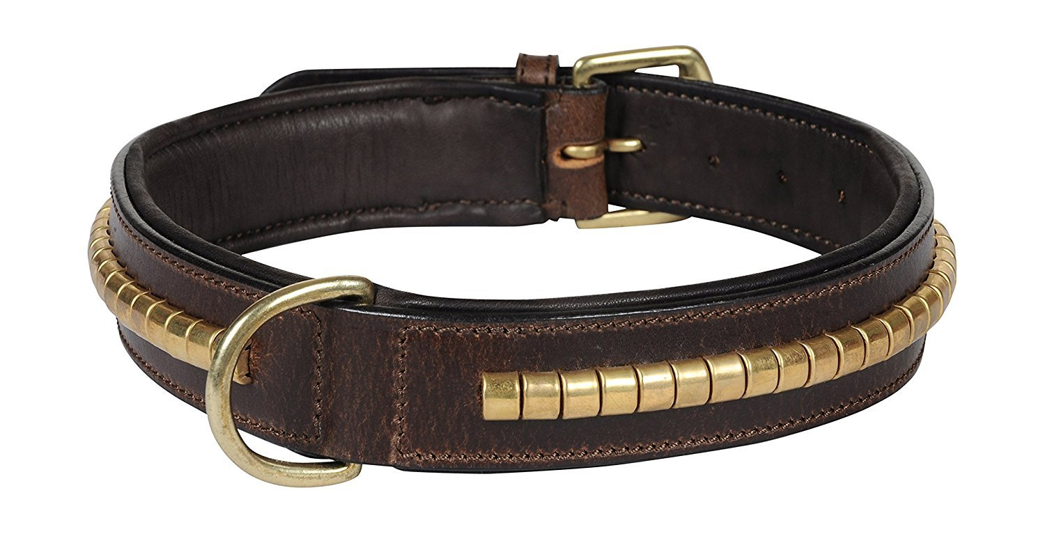 Brown L Brown L STAR Q Feather Soft Genuine Leather Dog Collar with Brass Polish Conchores Decoration and Sheep Leather Padded