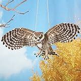 Collections Etc Outdoor Swinging Owl in Flight