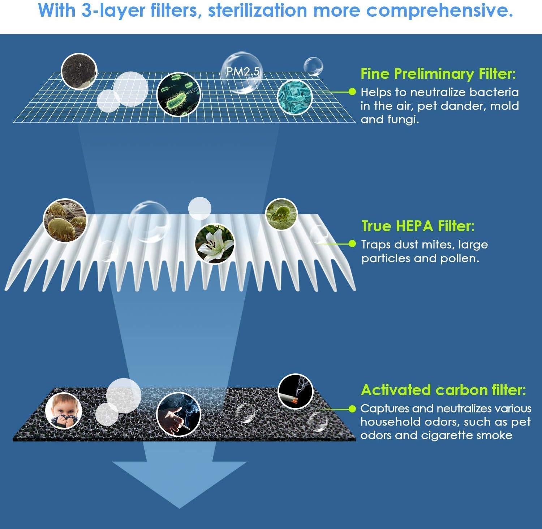 Hocheffizienter HEPA und Aktivkohlefilter INTEY LW-01 Ersatzfilter f/ür Luftreiniger