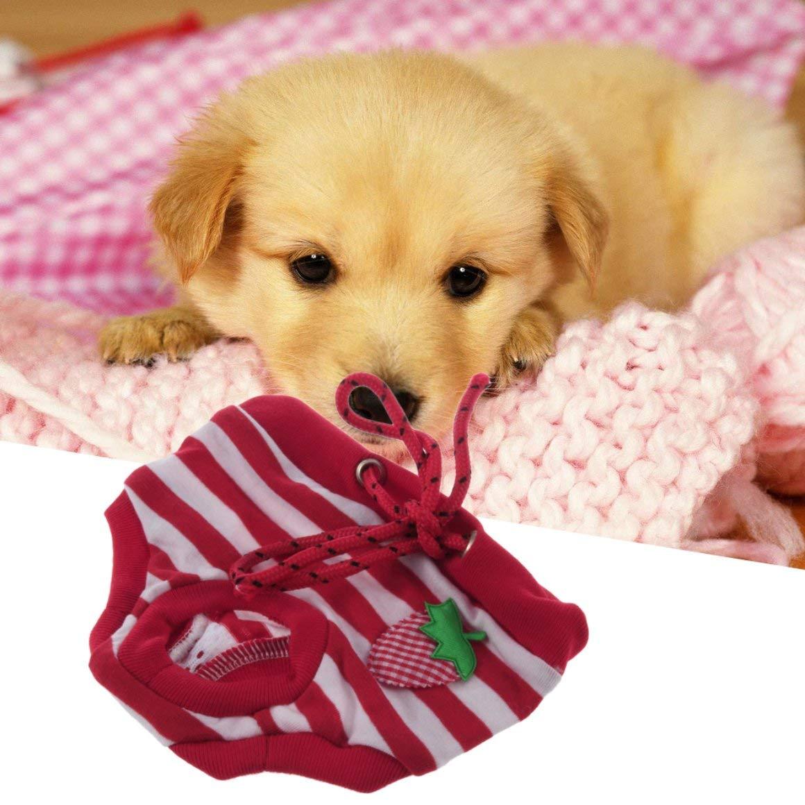Funnyrunstore Lindos y cómodos Pantalones Sanitarios para Tus adorables Perros (Rojo): Amazon.es: Productos para mascotas