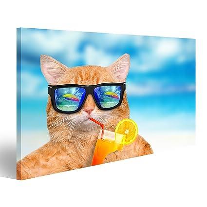 islandburner Cuadro Cuadros Gato con Gafas de Sol de ...