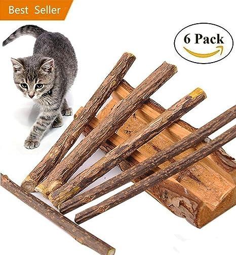 jouet chat catnip