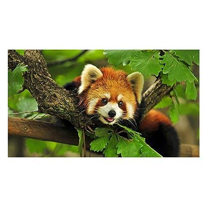 Tableau toile panda roux 3 parties triptyque 5 71gW8yQIQUL. SX425