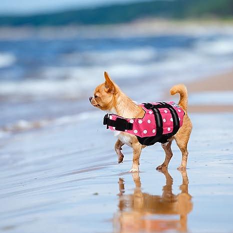Yosoo Varios colores elección – Chaleco de natación Agua Pet Vida chaleco salvavidas Saver mascota perro