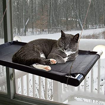 Originalidad Strong Suction Cup Cat Window Perch, Heavy Duty Cat Window  Hammock, Cat Window