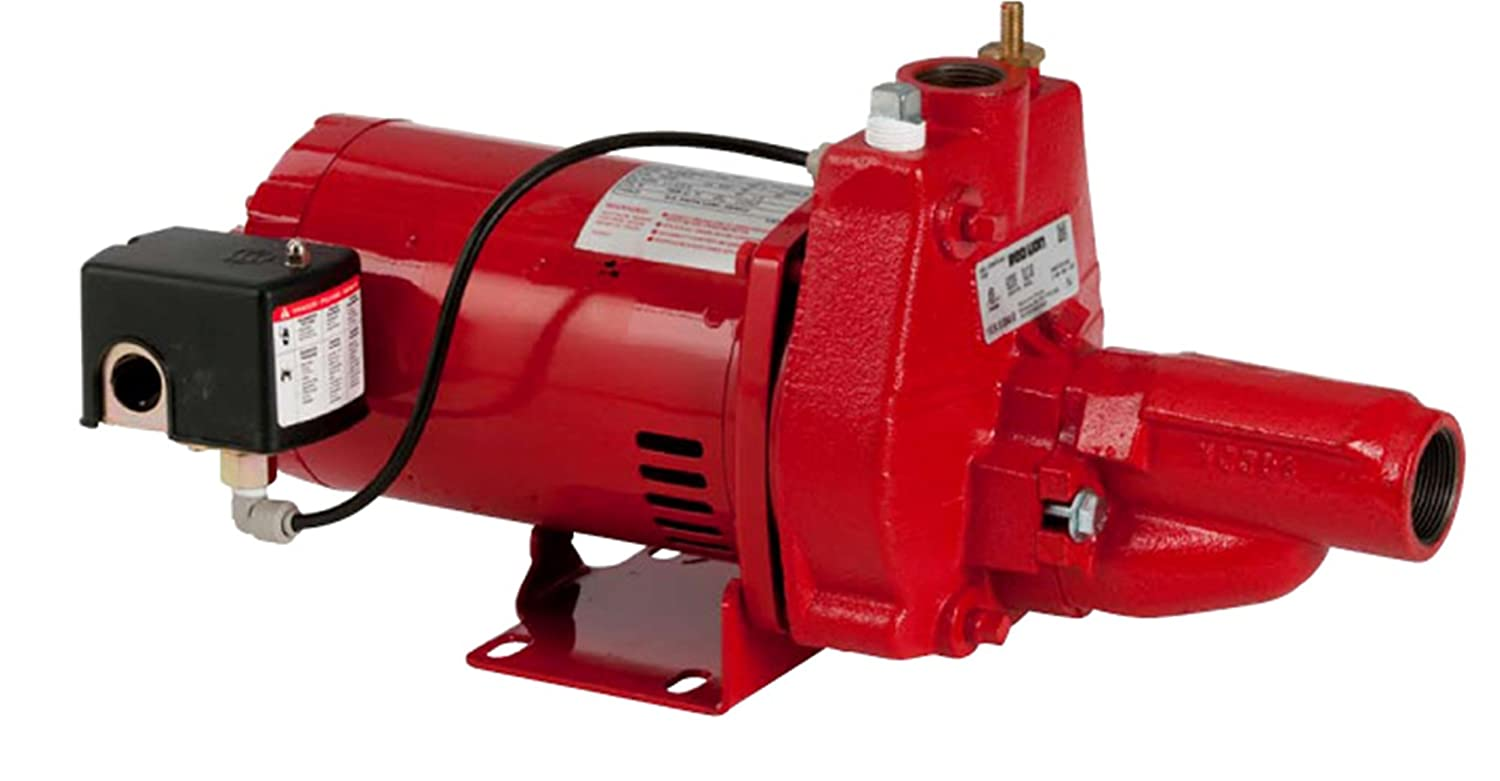 Red Lion 602037 3/4-HP Convertible Jet Pump with Injector Kit, Cast Iron -  Sump Pumps - Amazon.com