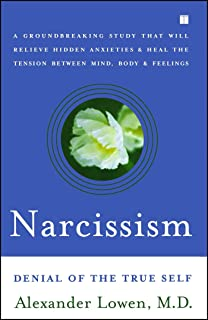 The Everything Guide to Narcissistic Personality Disorder