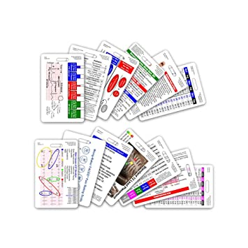 photo about Printable Paramedic Drug Cards identified as Thorough EMS Vertical Badge Card Preset - 13 Playing cards