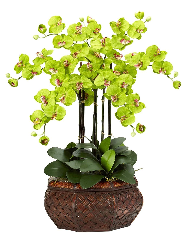 造花 - ラージ グリーン 胡蝶蘭 フラワーアレンジメント シルクフラワー B07KVDWYHR