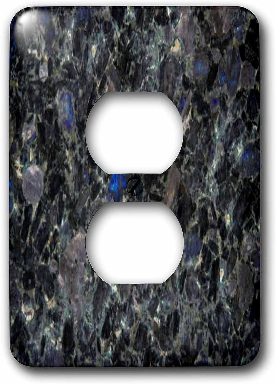 3dRose lsp/_606/_6 Blue Jay 2 Plug Outlet Cover