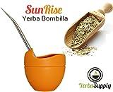 Yerba Mate Silicone Gourd and Bombilla Combo