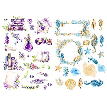 Amazon.com : Seasonstorm Purple Book Fig Sea Horse Label ...