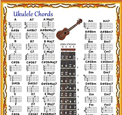 Amazon.com: UKULELE CHORDS POSTER CHART IN A TUBE: Musical Instruments