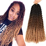 AliRobam 18inch Water Wave Ombre Passion Twist Crochet Bohemian Curly Braids Hair Synthetic Passion Twist Braiding Hair…