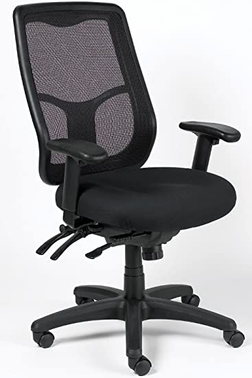 Captivating Eurotech Apollo Ergonomic Mesh Back Office Chair By Raynor